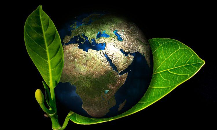 Zelené technológie Ekológia